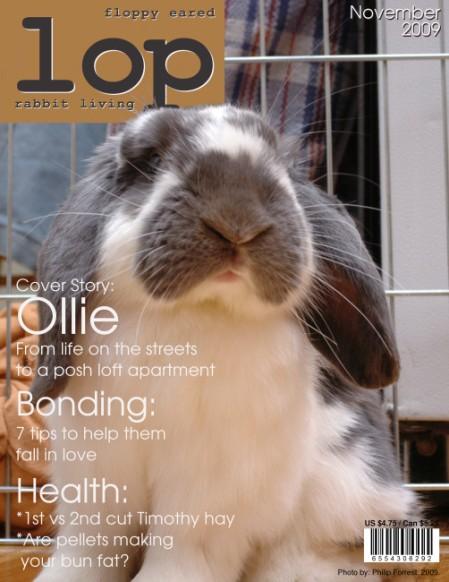 Lop magazine